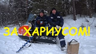 В поисках Хариуса! Зимняя рыбалка в удовольствие на малой Уральской реке!