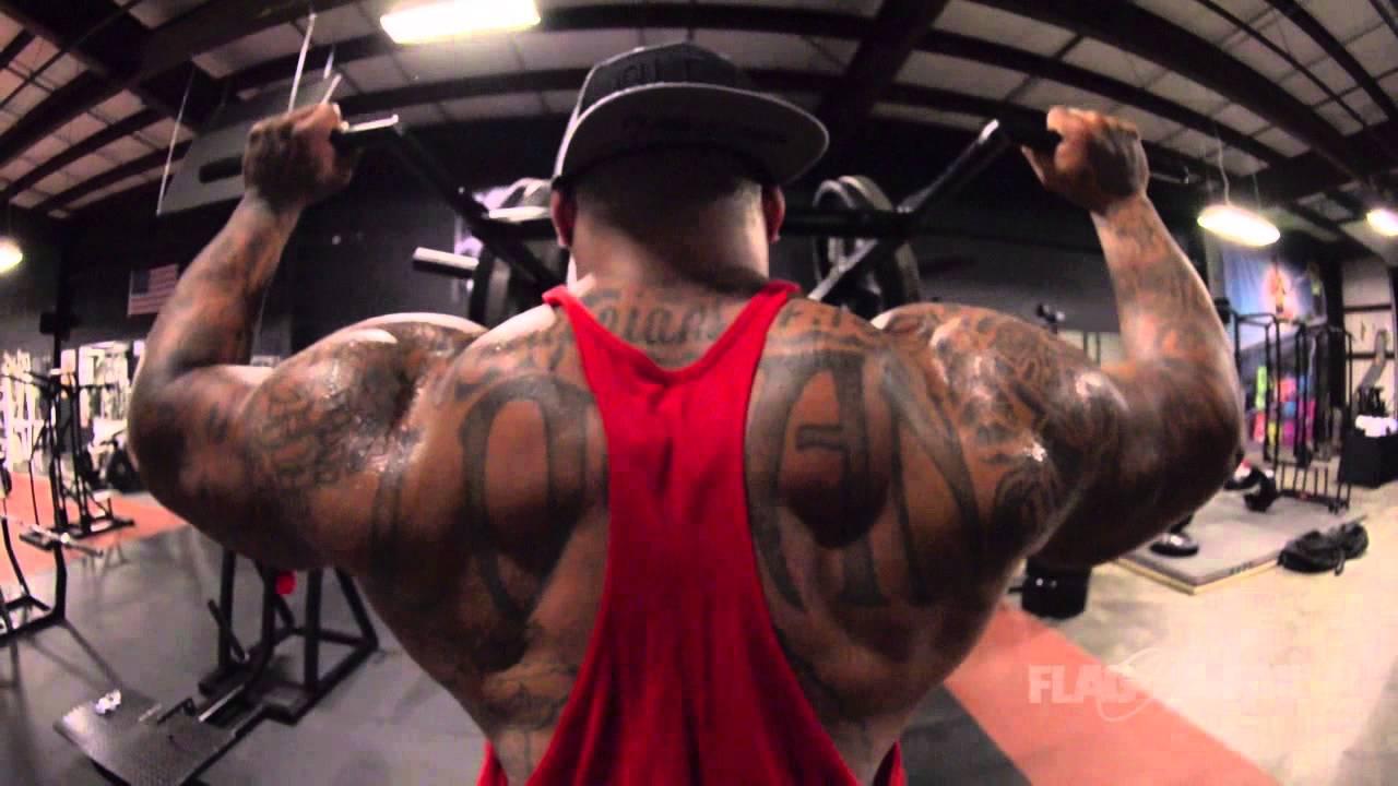 Shoulder Motivation Part 1 Dana Linn Bailey