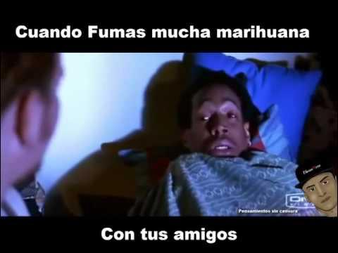 Cuando fumas mucha marihuana con tus amigos