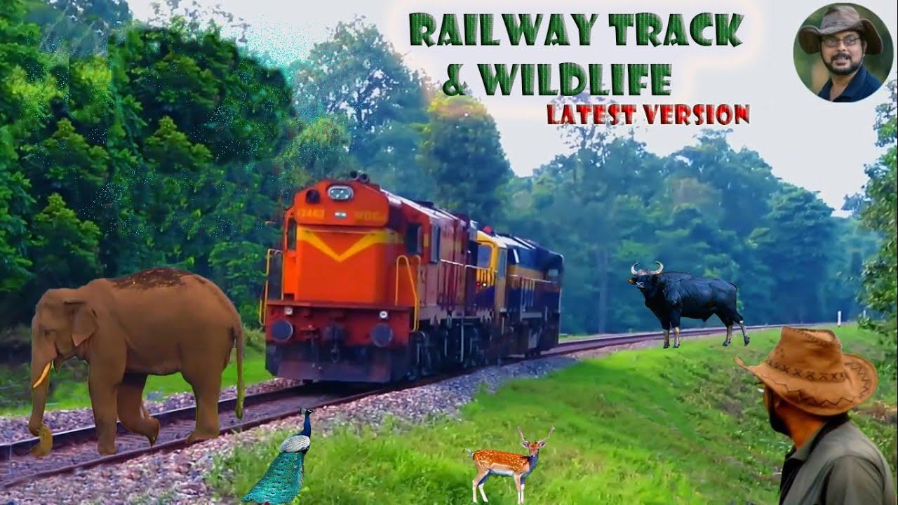 Railway Track & Wildlife(Latest).