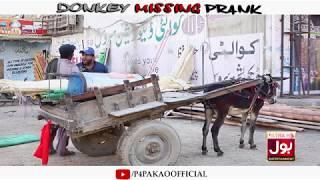 | Donkey Missing Prank | By Nadir Ali In | P4 Pakao | 2019