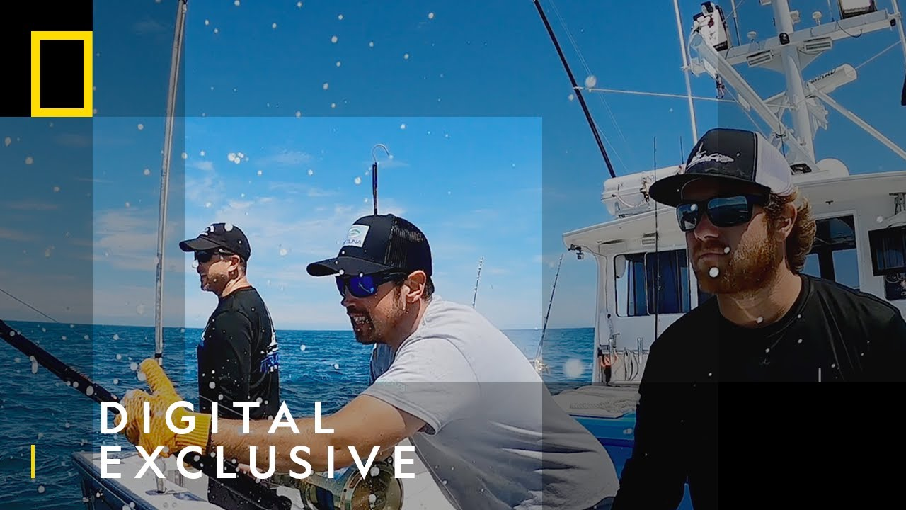 Bluefin Tuna Haul | Wicked Tuna | National Geographic UK