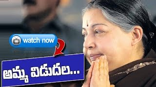 Jayalalithaa Released from Bangalore Jail after 21 days : TV5 News