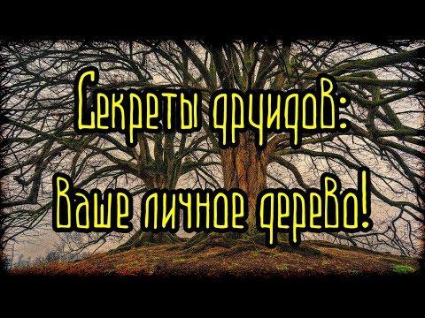 ГОРОСКОП ДРУИДОВ! Секреты друидов - ваше личное дерево! (Легенды и мифы)