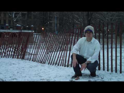 Fences - Phoenix