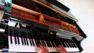 Sportfreunde Stiller - Applaus Applaus (Benedikt Waldheuer Piano Cover)