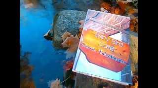 November romance book trailer - The Early Bird Cafe