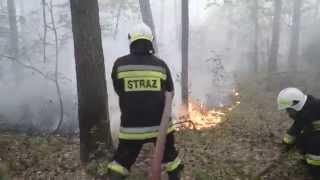 Pożar lasu , Helin 30-06-2015