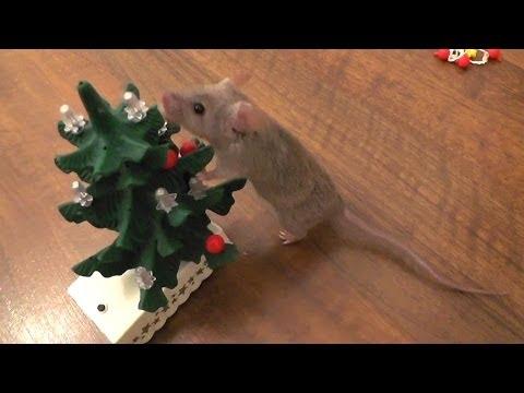 Mouse decorates the Christmas tree [Original]