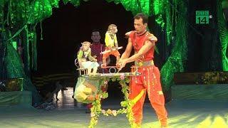 VTC14 | Ngày tàn của xiếc thú ở Việt Nam sắp tới?