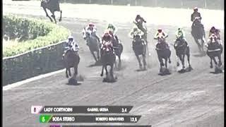 Vidéo de la course PMU DONA FLO