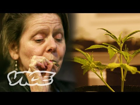 Getting Stoned with Seniors in Seattle