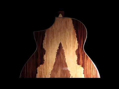IBANEZ AEW51 NT - guitare folk