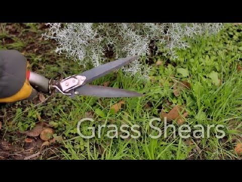 How to Use Grass Shears : Garden Tool Guides