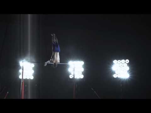 Championnats d'Europe de Gymnastique Artistique Masculine