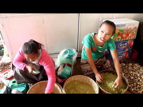 Laos tour Pakse