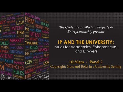 Panel 2: Copyright: Nuts and Bolts in a University Setting