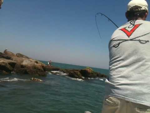 Redfish Fishing - Ponce Inlet Best Place Ever!
