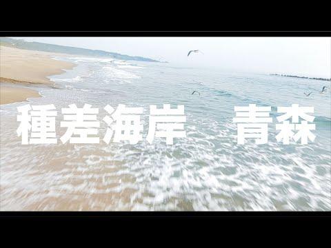 【空の旅#8】「種差海岸を飛んでいたらカモメの群れに遭遇した 」空撮・多胡光純・青森県_Aomori aerial