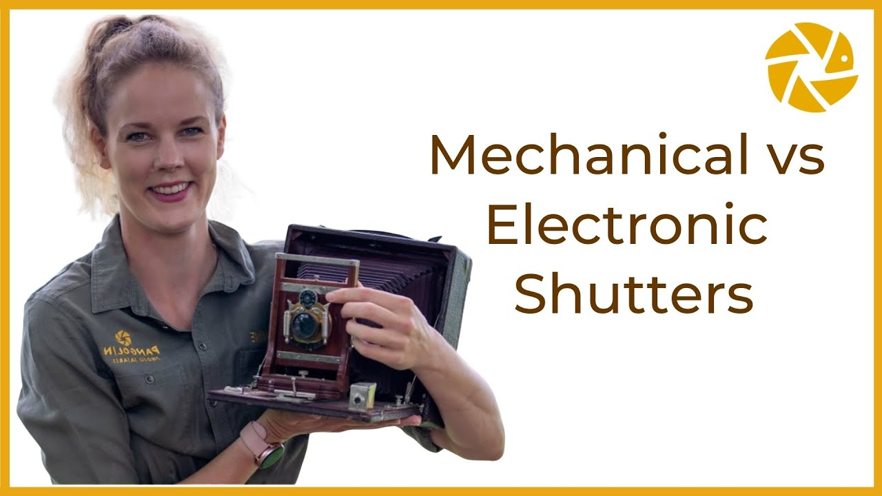 Mechanical Vs Electronic Shutter. Which is BETTER for wildlife photography?