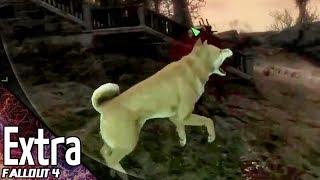 番外編【FPS】こたつの『Fallout4(フォールアウト4)』ゲーム実況【初見プレイ&柴犬MOD】