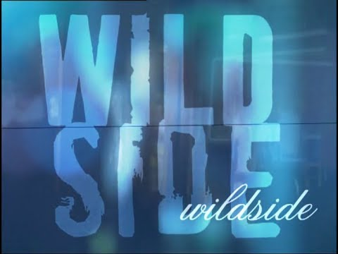 Wildside  The Miniseries  Part 1 of 2 MA15