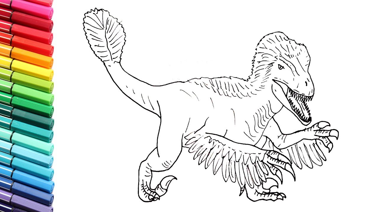 How to Draw the Utahraptor Dinosaur - Drawing and Coloring New Velociraptor  - Dinosaur Color Pages