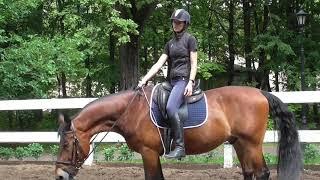 Уроки верховой езды. Равновесие в движении. Учебная рысь.