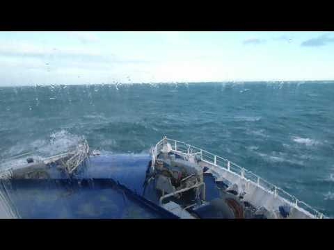 Big waves in the Cook Strait!