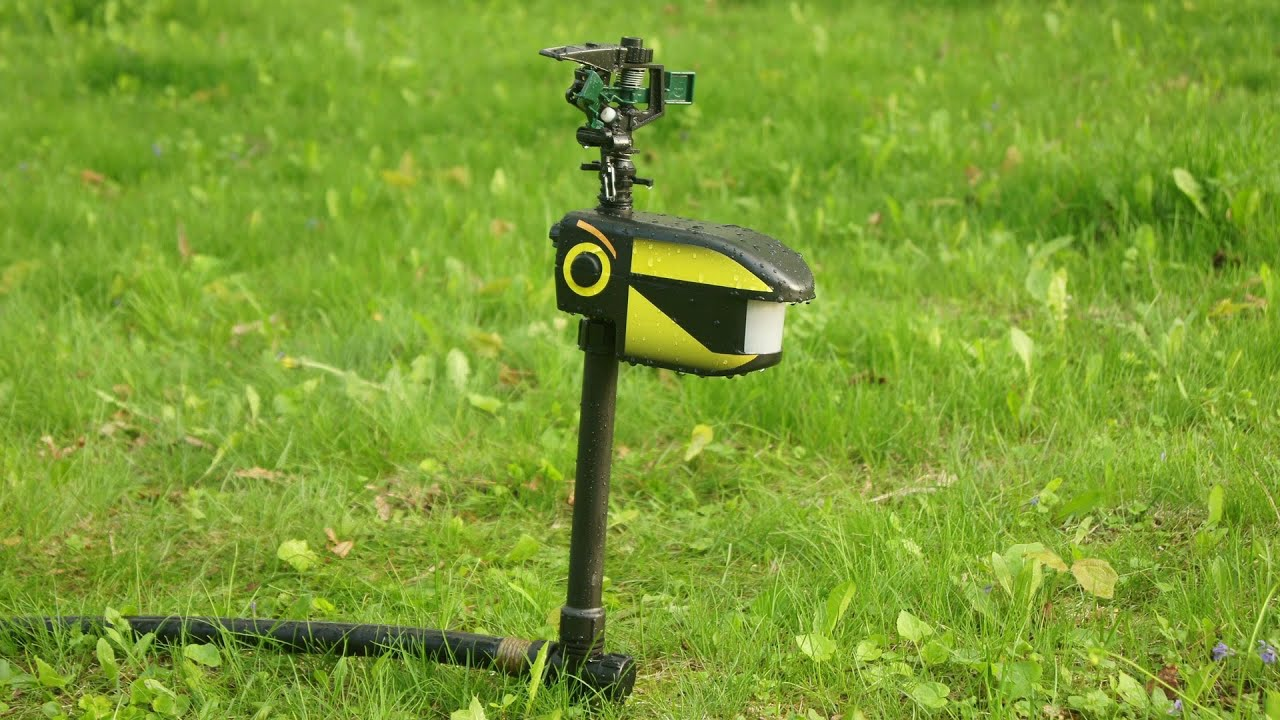 Scarecrow Motion Activated Sprinkler Test U0026 Review: BEST Animal Deterrent?    YouTube