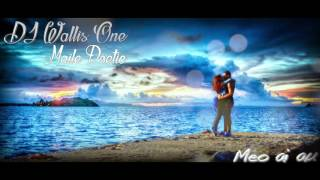 dj wallis one ft maile poetic meo ai au love song 2k16