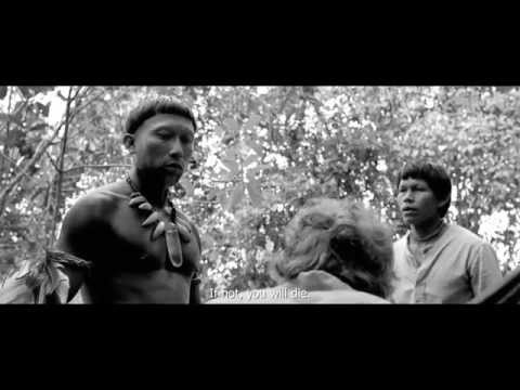 Embrace Of The Serpent  International