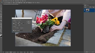 Resize Image in Photosense