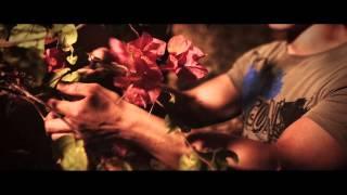 Свадьба в Доминикане видео с вертолета