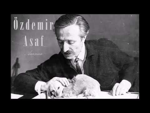 Yalnızlığa Övgü - Özdemir Asaf.. (28 Ocak Şair Halit Özdemir Arun Anısına..)