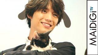 福士蒼汰、共演の猫ナナにメロメロ 映画「旅猫リポート」公開直前イベント3