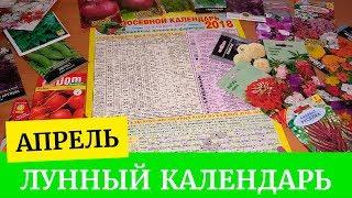 видео Календарь посадки лука 2018