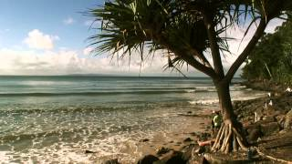 The 2012 Noosa Festival of Surfing