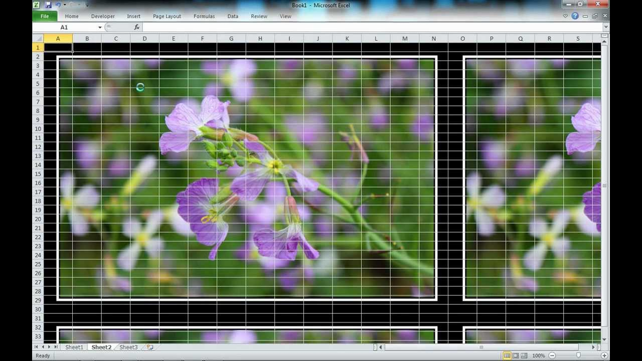 Video Tutorial How To Add A Background Image In Excel YouTube