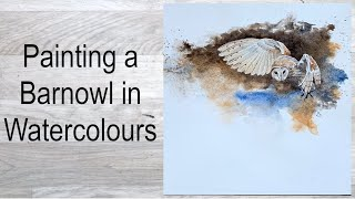 Painting a Barnowl in watercolours.