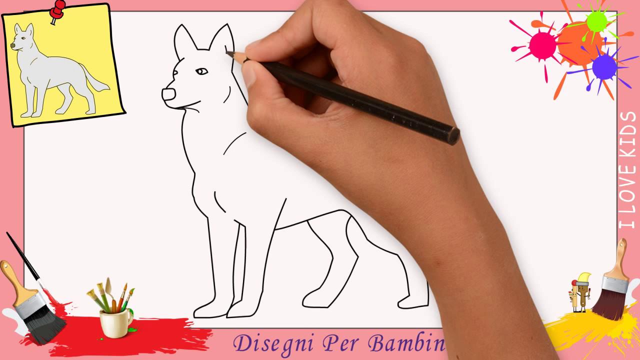 Disegni Di Lupo Come Disegnare Un Lupo Facile Passo Per Passo Per