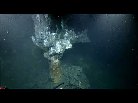 NautilusLive Oct 21 - Hydrothermal vents, tube worms and more!
