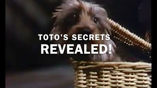 The Life and Death of Toto the Dog.