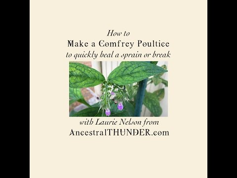 DIY Heal a Sprain or Broken Bone Quickly: make an herbal medicine Comfrey Poultice..