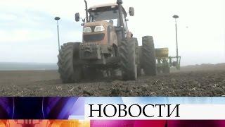 На Ставрополье фермер изШотландии сделал убыточное предприятие процветающим.