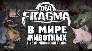 DIA-FRAGMA - В мире животных (Live rep. 01.05.2018)