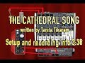 THE CATHEDRAL SONG Written By Tanita Tikaram mp3