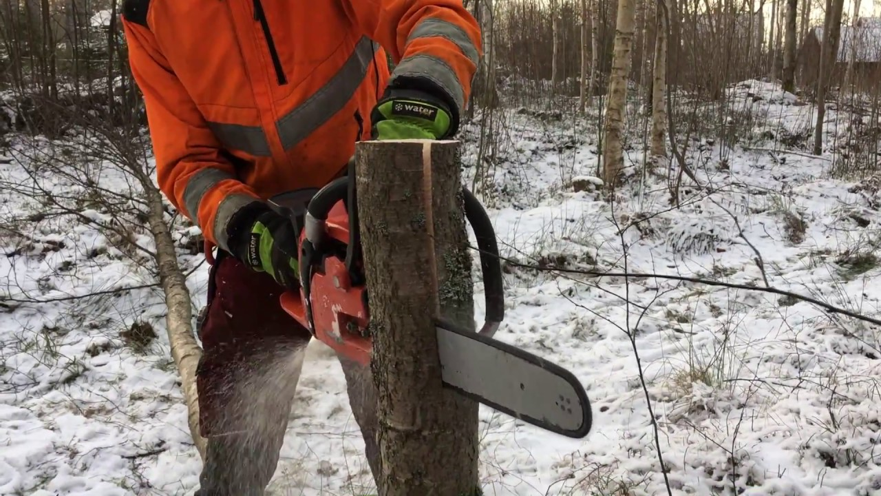 Best Professional Chainsaws 2019 - Top Picks, Reviews & Guide