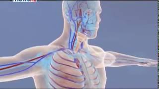 दशैंमा मासु खाँदा सावधानी नअपनाए लाग्न सक्छ दीर्घरोग - HEALTH NEWS