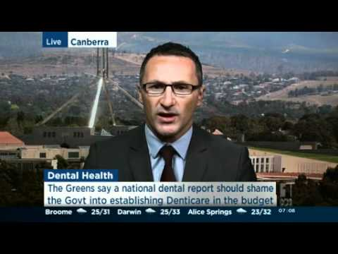 Greens call for dental care funding